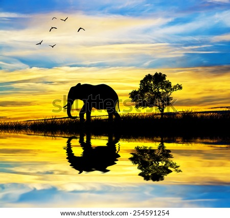 elephant silhouette in africa lake - stock photo