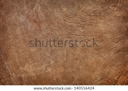 Elephant skin natural texture. Photographic brown background - stock photo