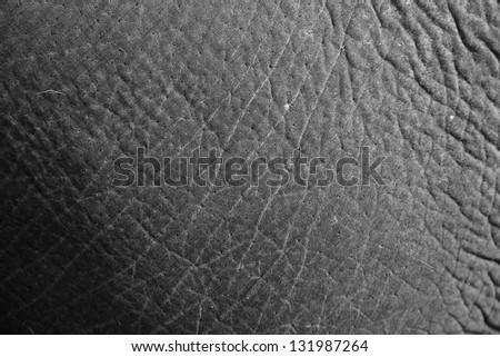 Elephant skin textured - stock photo