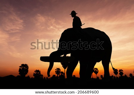 Elephant working on twilight time in Thailand Asia