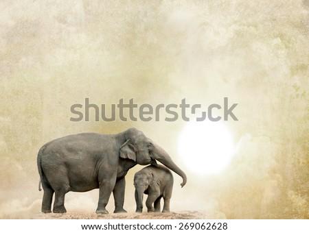 elephants on a grunge background - stock photo