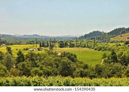 Elevated view of Sonoma Valley Ca - stock photo