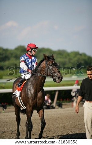 ELMONT - JUNE 6: Senior with Michael Luzzi aboard returns after The Woodford Reserve GradeI Stakes at Belmont Park on Belmont Stakes Day - June 6, 2009 in Elmont, NY.