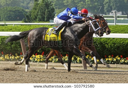 """ELMONT, NY - MAY 28: Eddie Castro and """"It's Tricky"""" outrun Alan Garcia and """"Cash for Clunkers"""" to win The Ogden Phipps Stakes at Belmont Race Track on May 28, 2012 in Elmont, NY. - stock photo"""