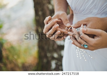 Embraces of hands of the newly-married couple with wedding rings in them. - stock photo