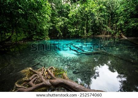 Emerald Pool - stock photo