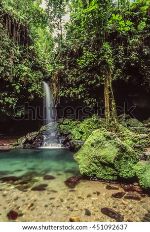 Emerald pool on the island of Dominica with waterfall