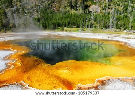 Emerald Spring In Yellowstone National Park