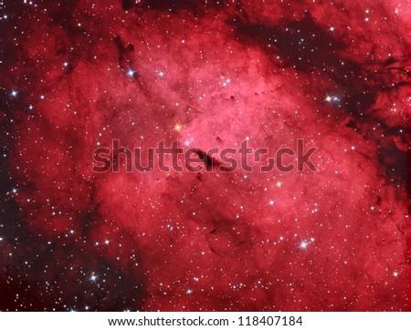 emission nebula in constellation Cygnus - stock photo
