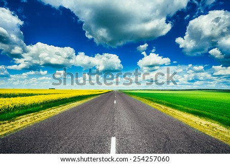 Empty Asphalt Countryside Road Through Fields With Yellow Flowering Canola Rapecolza Canola And Growing Green Wheat In Spring. Sunny Day White Clouds On Blue Sky - stock photo