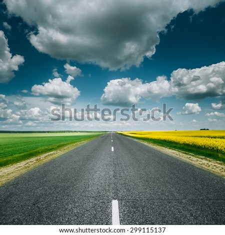 Empty Asphalt Countryside Road Through Fields With Yellow Flowering Canola Rapecolza Canola And Growing Green Wheat In Spring. Sunny Day White Clouds On Blue Sky