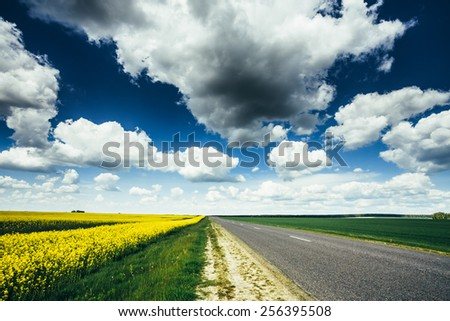 Empty Asphalt Countryside Road Through Fields With Yellow Flowering Canola Rapecolza Canola In Spring. Sunny Day White Clouds On Blue Sky - stock photo