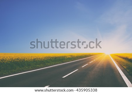 empty asphalt road and floral field of yellow flowers. natural  background. vintage picture - stock photo