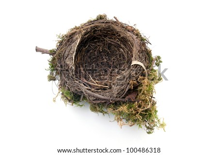 empty bird nest - stock photo