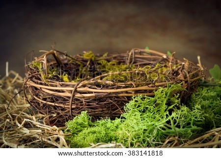 Empty bird's nest with moss and hay - stock photo
