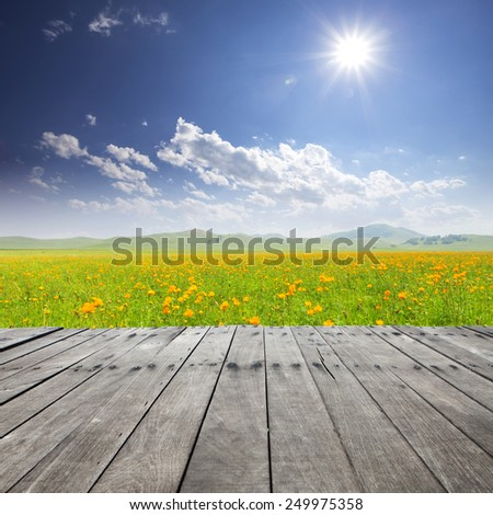 Empty board with sky,meadow and wildflower background - stock photo