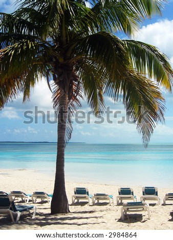 Empty chairs on the beachside in the Bahamas