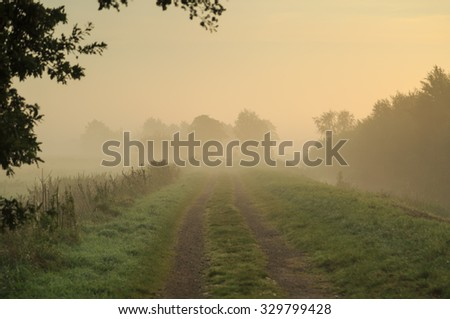 Empty countryside gravel road during a foggy morning in early autumn.