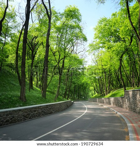 empty curved road between the green trees in park - stock photo