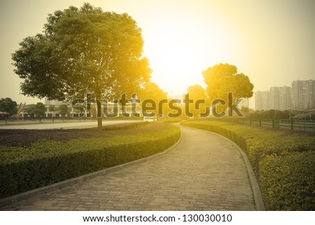 Empty curved road in the woods - stock photo