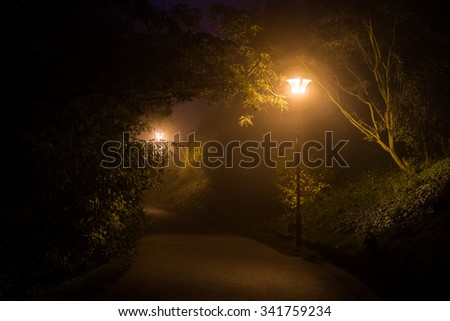 Empty footpath with lamppost in the park in night - stock photo