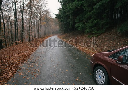 Empty forest road with family car