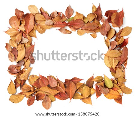 empty frame of dry leaves. Isolated on white background - stock photo