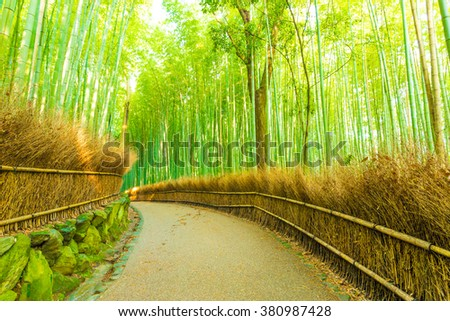 Empty gently curving footpath road lined with hay fence and high trees in the early morning  in Arashiyama Bamboo Grove forest in Kyoto, Japan. Horizontal - stock photo