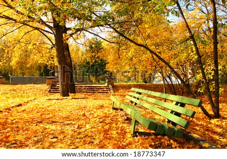 Empty green bench in the autumnal park. - stock photo