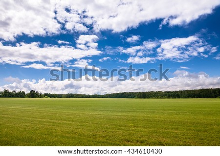 Empty green field with blue cloudy sky