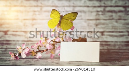 Empty Greeting Card and Fresh Orchid Flowers with Yellow Green Butterfly on Top of Wooden Table, Illuminated with Lens Flare from Upper Left Corner of the Frame. - stock photo