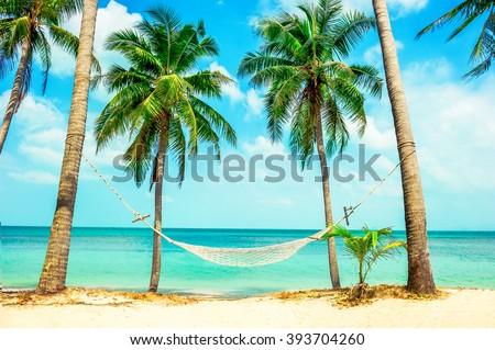 Empty hammock betven palms - stock photo