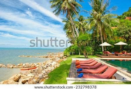 Empty hammock between palm trees - stock photo