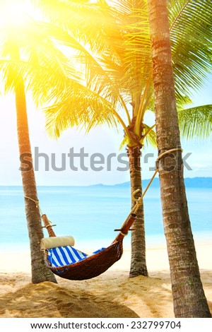 Empty hammock between palm trees - stock photo