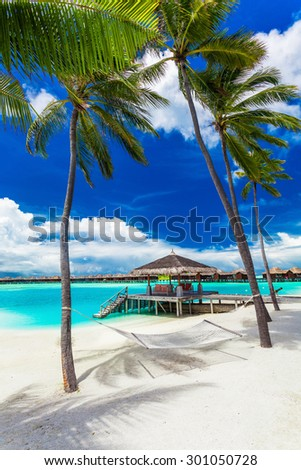 Empty hammock between palm trees on tropical beach with vibrant blue sky - stock photo