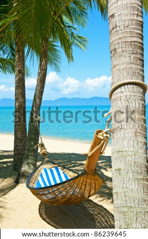 Empty hammock between palms trees at sandy beach - stock photo