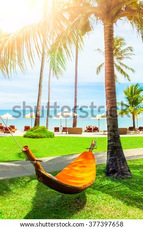 Empty hammock between palms trees. Vacation concept