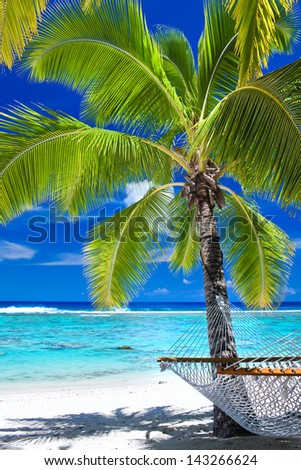 Empty hammock under palm tree on tropical beach - stock photo