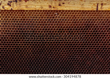 Empty honey bee frame from a hive with Colony Collapse Disorder - stock photo