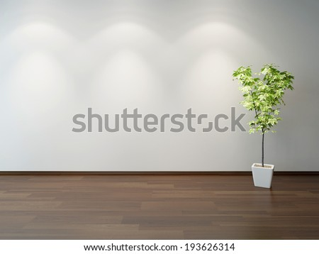 Empty interior with a green decorative plant in a white rectangular ceramic pot on brown wooden parquet floor, and light grey wall - stock photo