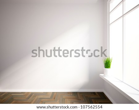 empty interior with a green plant - stock photo