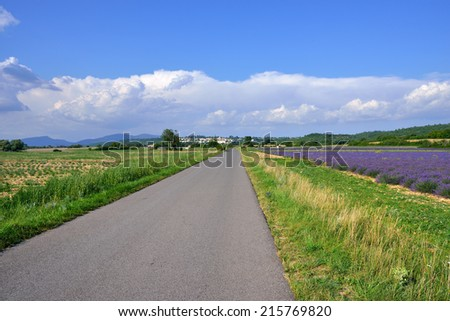 Empty local road along rural field. Plateau of Sault, Provence, France - stock photo