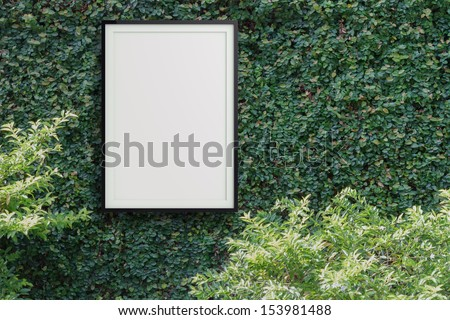 empty modern style frame 3d on Green leaves wall background - stock photo