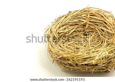 Empty nest  on white background