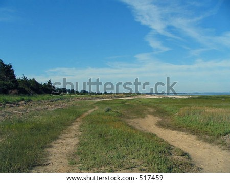 Empty path to the beach on Cape Cod