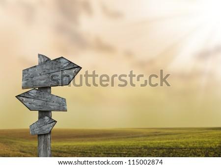 Empty quide-post in savana - stock photo