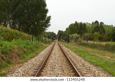 Empty Railway track trough woods on cloud day - stock photo