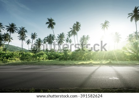 empty road in jungle of Seychelles islands - stock photo
