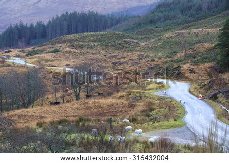 Empty Road in Scotland - stock photo