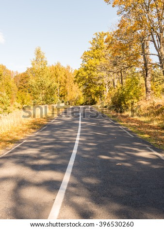 empty road in the countryside with trees in surrounding. perspective in autumn